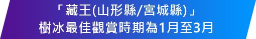 「藏王(山形縣/宮城縣)」 樹冰最佳觀賞時期為1月至3月