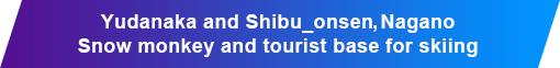 Yudanaka and Shibu_onsen, Nagano Snow monkey and tourist base for skiing