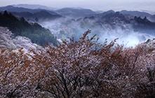 Mt. Yoshino