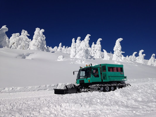 [Tohoku Snow Monsters] Snow Monster Trees Tour via Snowcat in Zao, Miyagi (Round-trip Shuttle Bus from Sendai Station)