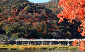 Autumn leaves in Arashiyama, KYOTO