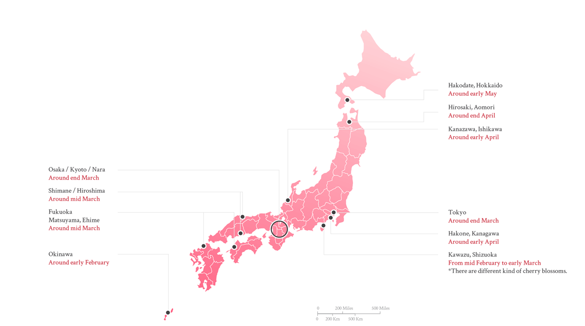 Sakura Forecast in Japan