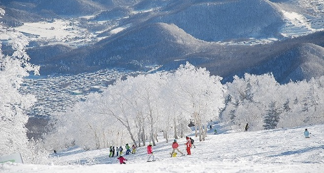 1-Day Ski Plan at Teine Ski Resort (with Round-trip Bus from Sapporo) (Beginner Course)